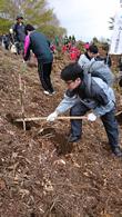 「あさひの森・速日の峰」での植林活動